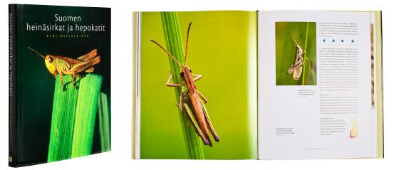 Kansi ja aukeama kirjasta Suomen heinäsirkat ja hepokatit.