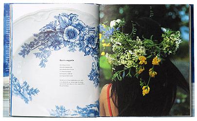 Ett omslag och en öppning av boken Kauhalla & vasaralla.